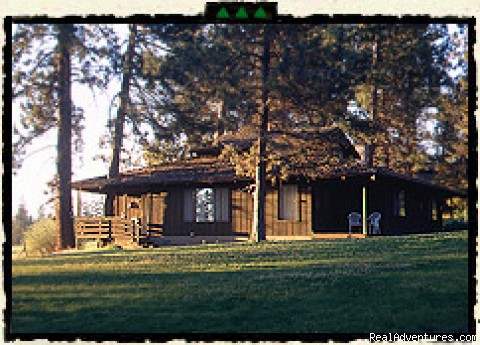 Cabins are nestled under ponderosa pines - Rock Springs Guest Ranch