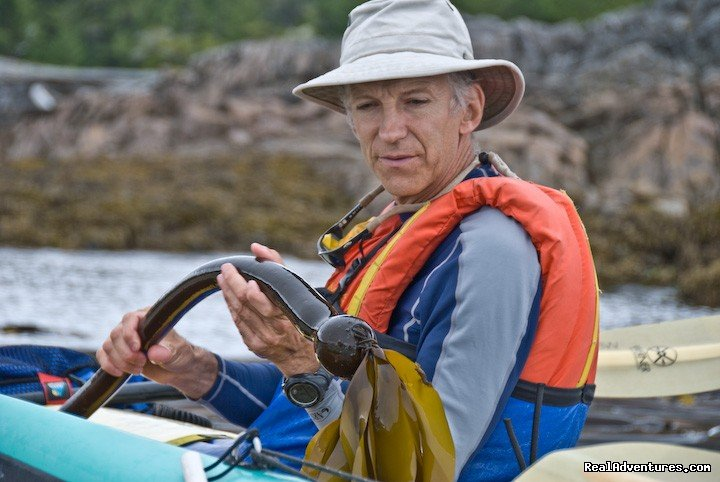 Terry gives natural history talk BC Canada | Image #23/25 | Sea Kayak Vacations & Whale Adventures in Baja/BC
