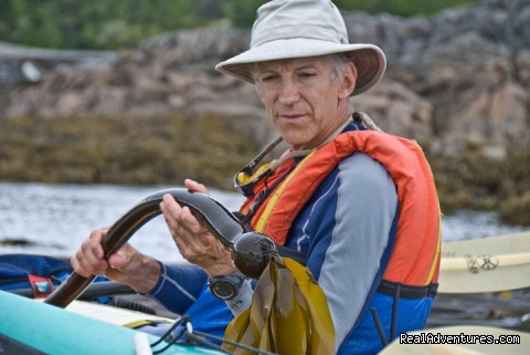 Terry gives natural history talk BC Canada (#23 of 26) - Sea Kayak Vacations & Whale Adventures in Baja/BC