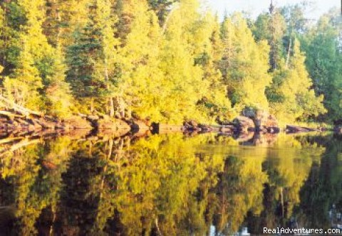 Glorious Autumn color show - Wilderness canoe trips with Voyageur North Ely MN