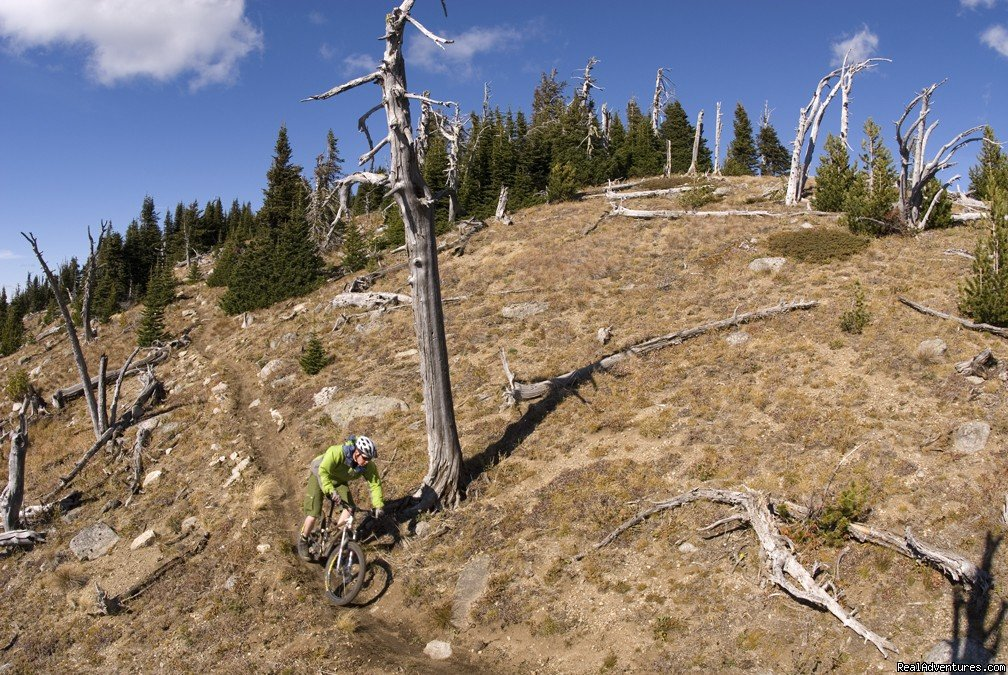 Image #9/25 | Award-Winning Singletrack Adventures