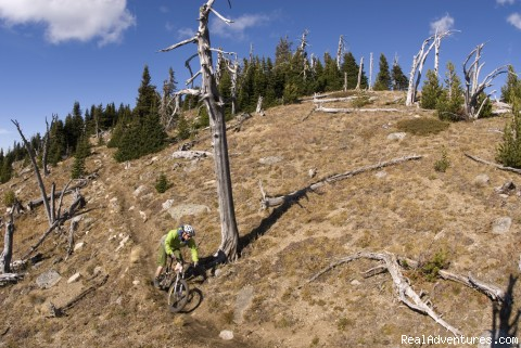 - Award-Winning Singletrack Adventures