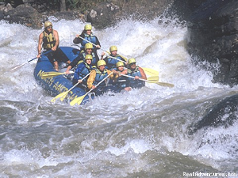 New & Gauley River Whitewater Rafting (#2 of 2) - North American River Runners