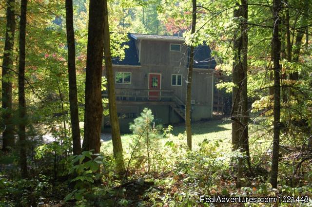 Cottage in the Woods (#2 of 10) - Quality Mountain City Lodging at Prospect Hill B&B