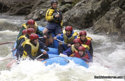 Deerfield River fun - Crab Apple Whitewater Rafting in New England
