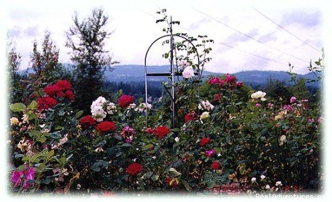 the rose garden at A Cascade View Bed & | Image #2/4 | A Cascade View Bed & Breakfast