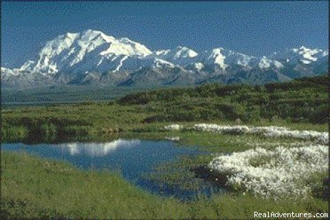 Adventure Alaska Tours & Trips Sight-Seeing Tours Alaska
