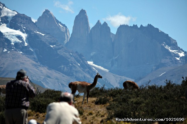 Torres del Paine Nat. Park (#6 of 13) - Patagonia Travel Adventures