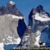 Guanaco , Torres del Paine Nat Park