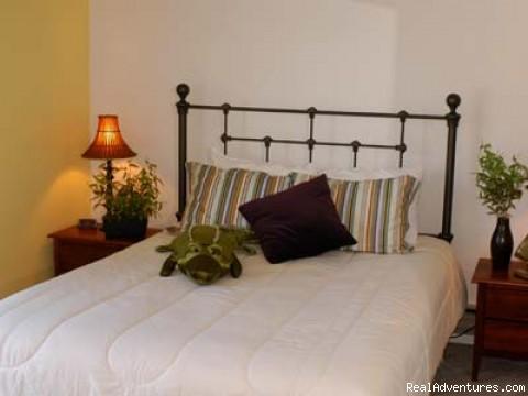- Romantic elegance at BaySide Inn
