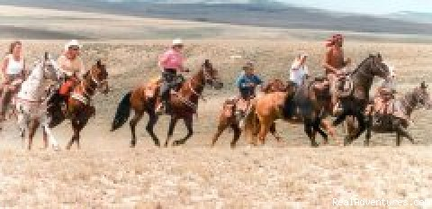 Cantering across the high plains desert - Western Encounters