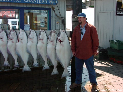 Homer Halibut - Alaska Fishing Adventures at Krog's Kamp