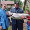 Alaska Fishing Adventures at Krog's Kamp Another Kenai King