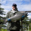Yet another King Salmon