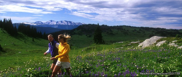 Hike an alpine meadow (#13 of 24) - Small Group Rockies & Vancouver Island Vacations