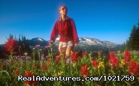 Flower power - alpine meadow - Small Group Rockies & Vancouver Island Vacations