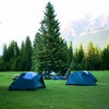 Camping near Jasper
