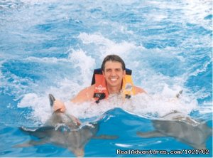 Swim with Dolphins at Dolphin World Florida Keys, Florida Eco Tours