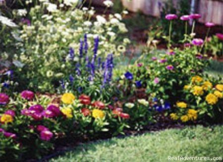 Garden Variety - Amarillo's Parkview  House B & B