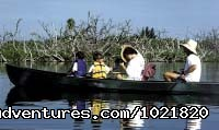 - Nature and Wildlife Adventures Florida