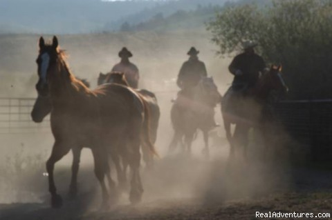 Sunrise Wrangling - Box R Ranch : A True West Experience