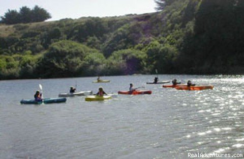 Kayakers at Mill Bend - Adventure Rents on the Redwood Coast