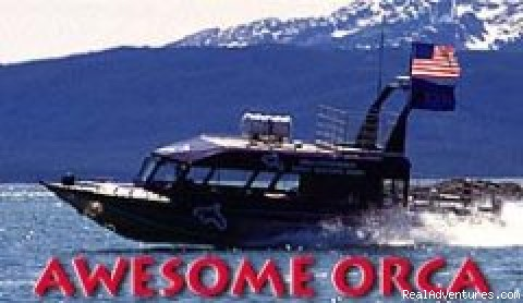 - Orca Enterprises whale watching tours