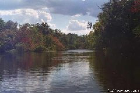 Katie's Wekiva River Landing: Photo #1