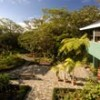 Monteverde Lodge & Gardens near the Cloud Forest