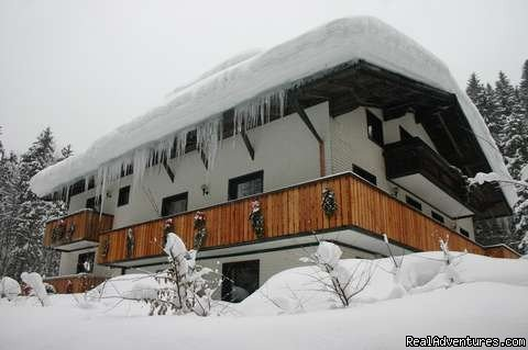 Our house in winter | Image #3/10 | The TreeHouse Backpacker Hotel
