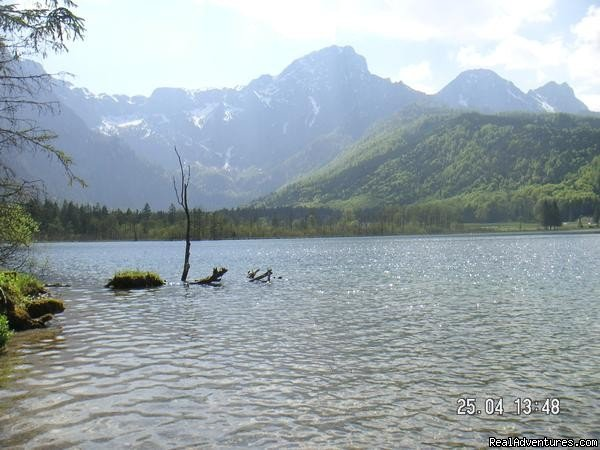 Lake Almsee | Image #5/10 | The TreeHouse Backpacker Hotel