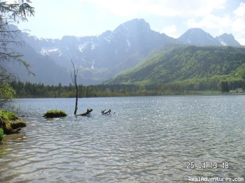 Lake Almsee - The TreeHouse Backpacker Hotel