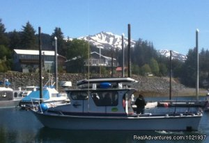 Fantastic Deep-Sea Fishing in Alaska Fishing Trips Seldovia, Alaska