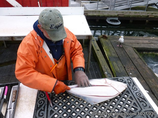 Stand clear - expert at work - Fantastic Deep-Sea Fishing in Alaska