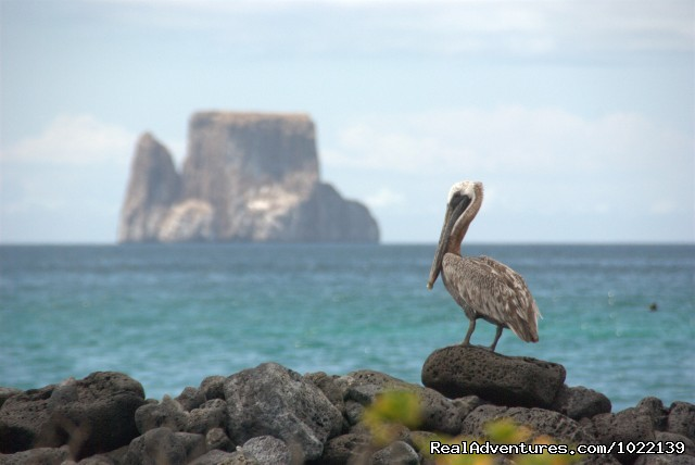 Kicker Rock in the distance - Explore the Galapagos Islands with Andean Trails