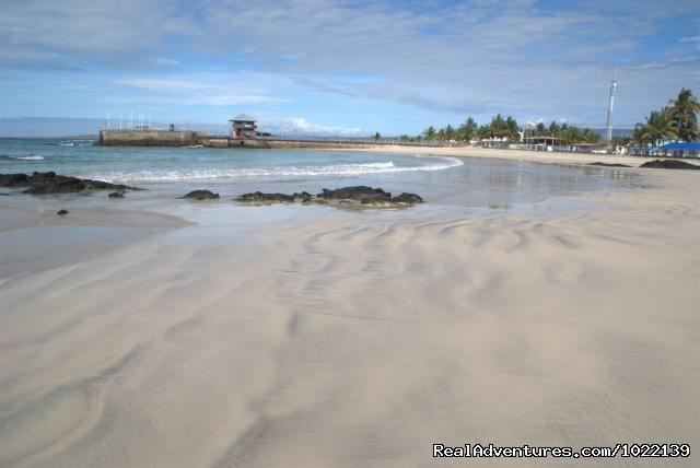 Pristine beaches - Explore the Galapagos Islands with Andean Trails