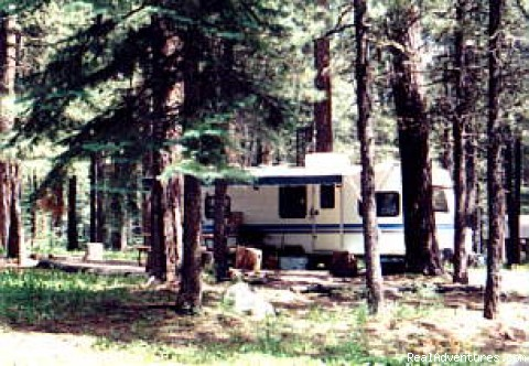 Sportsman's Supply, Campground & Cabins: Around the Campground