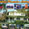 Pahala Plantation Cottages Pahala, Hawaii Vacation Rentals