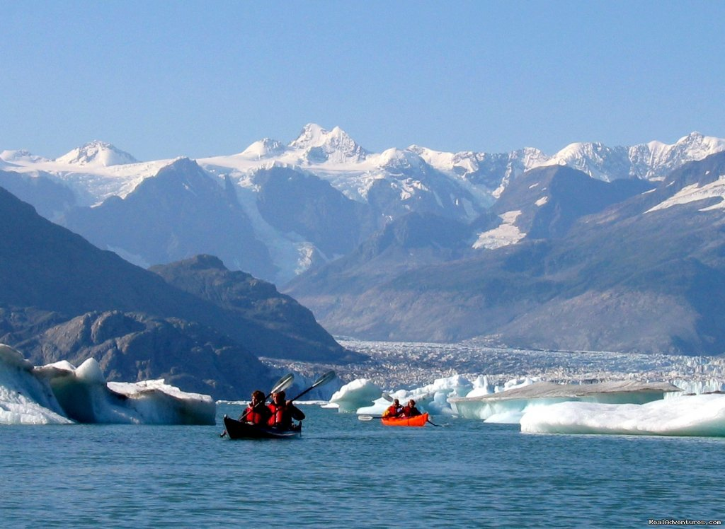 Paddle into the Columbia's massive floating icefield. | Image #2/8 | Alaska Sea Kayaking with Pangaea Adventures