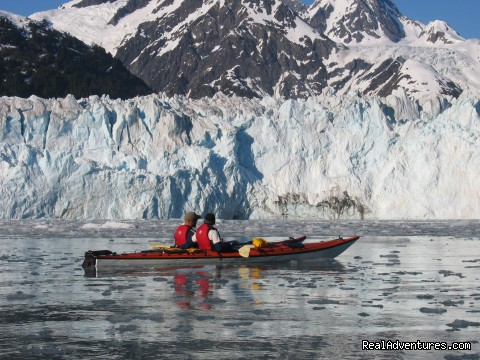 Witness the remote and advancing Mears Glacier. - Alaska Sea Kayaking with Pangaea Adventures