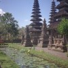 Hands on ART tours international Ubud, Indonesia Artisan & Trade Workshops
