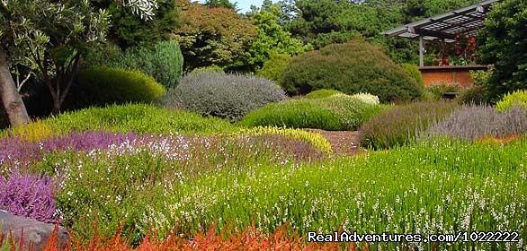 Eyepopping gardens - year round (#4 of 7) - Joshua Grindle Inn
