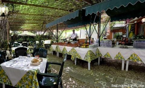 Garden/Restaurant - Hotel delle Muse