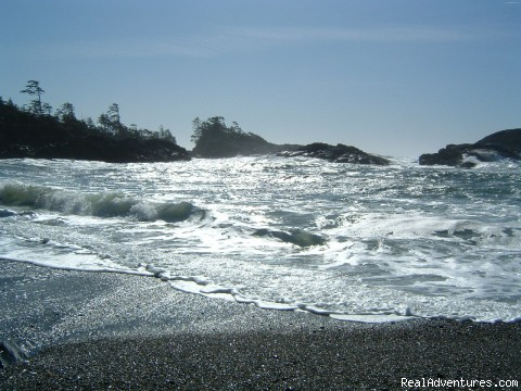 stormwatch, november thru february ! - A West Wind, Tofino