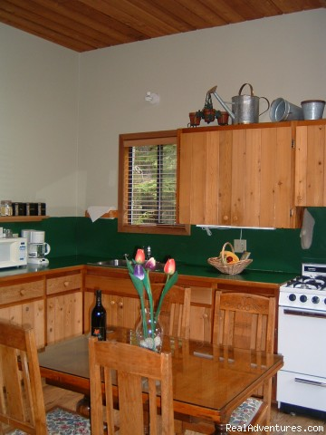 entertainment sized kitchen - A West Wind, Tofino