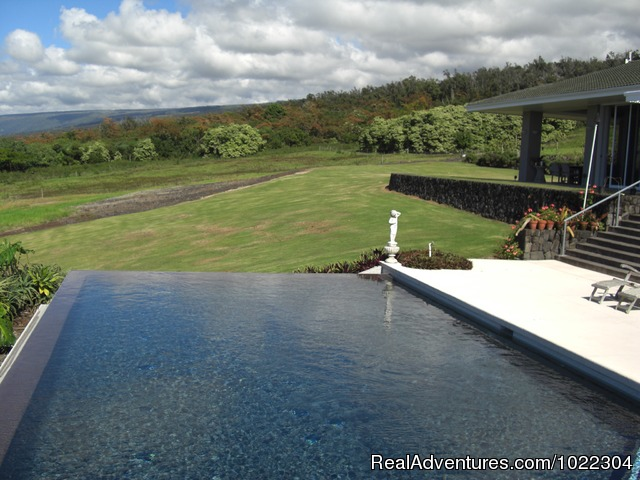 Infinity pool - Horizon Guest House
