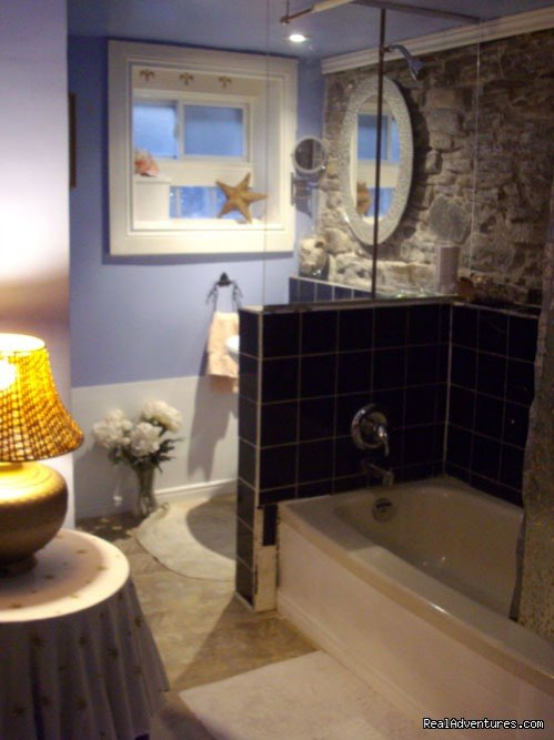 lower level bath | Image #11/16 | House on McGill