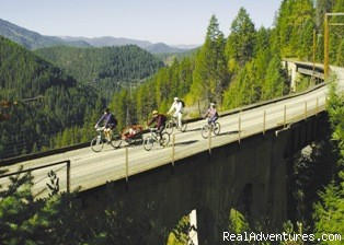 Bike Trails Galore - The Roosevelt Inn, Bed and Breakfast