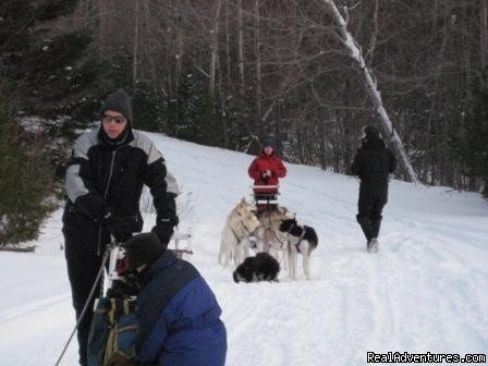 Dog sledding near Moosehead Lake | Image #4/15 | Lodge at Moosehead Lake for Nature Loving Hideaway