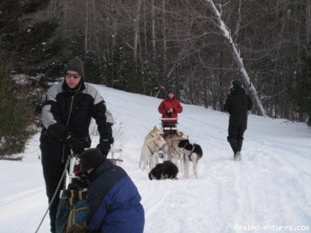 Dog sledding near Moosehead Lake - Lodge at Moosehead Lake for Nature Loving Hideaway
